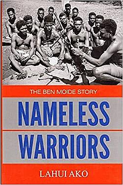 Namless Warriors cover